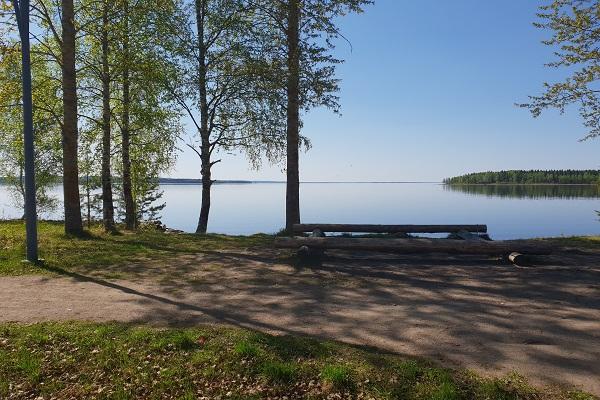 Oulujärvi käärmeniemestä